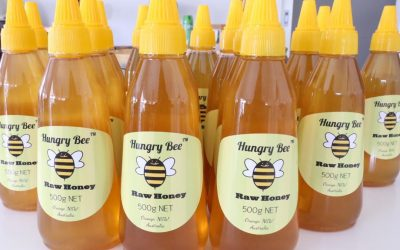 HUNGRY BEE honey facebook