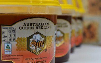 Queen Bee Line2