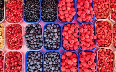 alex-block-vWI1kTcMcDI-unsplash berries