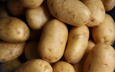 lars-blankers-B0s3Xndk6tw-unsplash potatoes