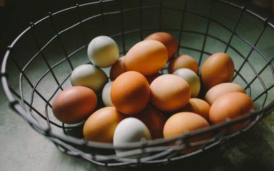 natalie-rhea-vZUTCqLYR7g-unsplash eggs