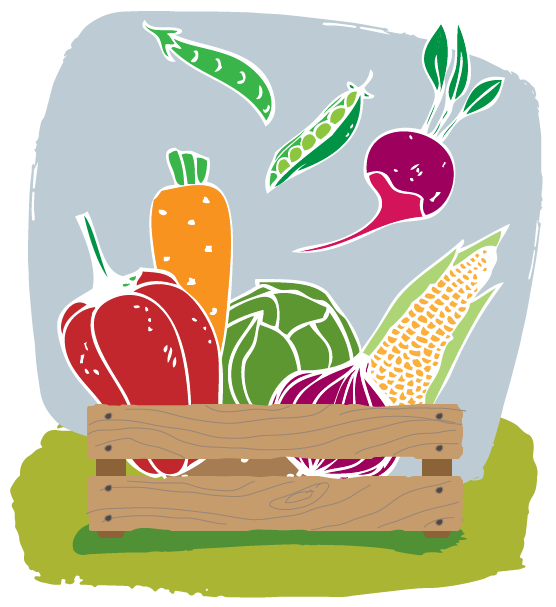handdrawn graphic - vegetable box